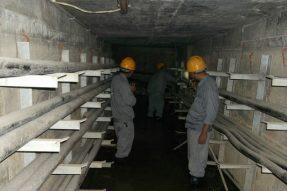 地产集团10KV百坪支塘白线搬迁工程