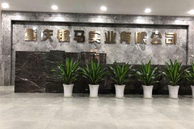 重庆有多少电厂?