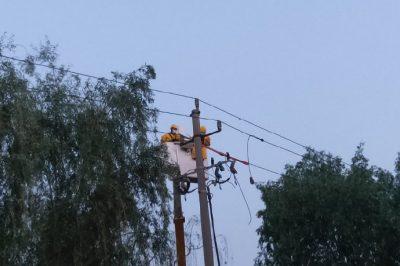 带电作业保供电 优质服务展形象