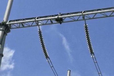 变电设备上有鸟巢,咋整?