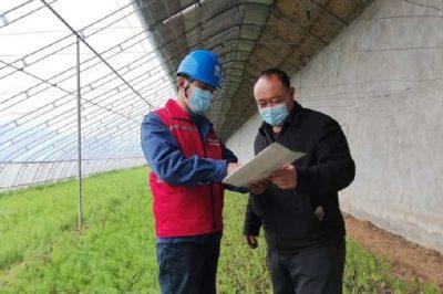 安全用电进大棚,助力农户稳增收